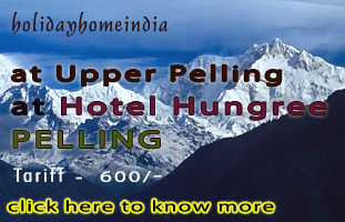 Holiday Home at Darjeeling, Hotel Crystal