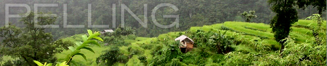 Holiday Home at Pelling, Hotel Hungree
