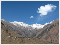Nature on the way to Bharmour